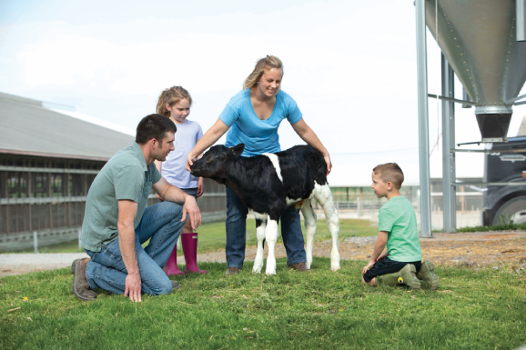 Tim, Grace, Kirsty, and Pierson Northrop with a calf in a field at Lawnel Farms